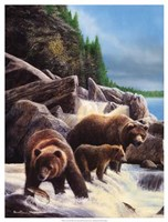 "Grizzlies by Falls by Kevin Daniel - 19"" x 25"""