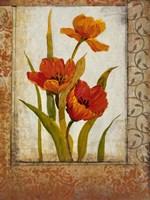 Tulip Inset II Fine Art Print
