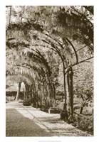 Queen's Garden, Kew, UK Fine Art Print