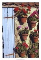 "Geranium Wall by Meg Mccomb - 18"" x 26"", FulcrumGallery.com brand"