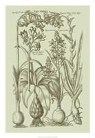 "Garden of Flora I by Vision Studio - 18"" x 26"", FulcrumGallery.com brand"