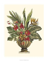 "Tropical Foliage in Urn II by Vision Studio - 20"" x 26"""