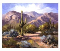 "Catalina Mountain Foothills by Maxine Johnston - 32"" x 26"""