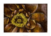 "Floral Illusion I by Jennifer Goldberger - 38"" x 28"", FulcrumGallery.com brand"