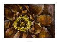 Floral Illusion I Framed Print