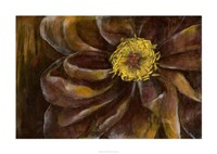 "Floral Illusion II by Jennifer Goldberger - 38"" x 28"", FulcrumGallery.com brand"