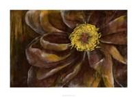 """Floral Illusion II by Jennifer Goldberger - 38"""" x 28"""""""