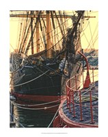 Tall Ships in Darling Harbour Framed Print