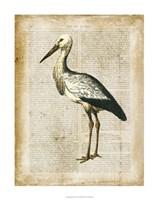 "Antiquarian Birds II by Vision Studio - 28"" x 28"" - $34.49"