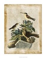 "Antiquarian Birds IV by Vision Studio - 22"" x 28"" - $34.49"