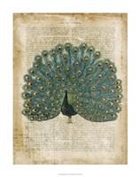 "Antiquarian Birds V by Vision Studio - 28"" x 28"" - $34.49"
