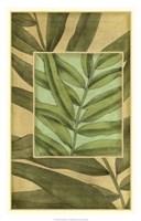 "Palm Inset Composition I by Jennifer Goldberger - 18"" x 28"", FulcrumGallery.com brand"
