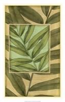"Palm Inset Composition II by Jennifer Goldberger - 18"" x 28"", FulcrumGallery.com brand"