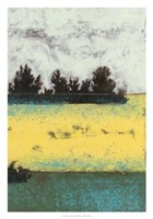 "Hedges II by Jennifer Goldberger - 21"" x 30"""