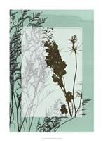 "Translucent Wildflowers II by Jennifer Goldberger - 22"" x 30"""