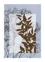 "Translucent Wildflowers VI by Jennifer Goldberger - 22"" x 30"""