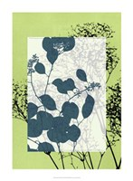 "Translucent Wildflowers VII by Jennifer Goldberger - 22"" x 30"""