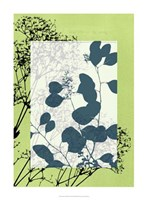 "Translucent Wildflowers VIII by Jennifer Goldberger - 22"" x 30"""