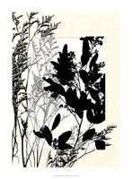 "Translucent Wildflowers X by Jennifer Goldberger - 22"" x 30"""