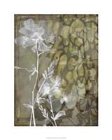 """Dusty Garden II by Jennifer Goldberger - 24"""" x 30"""" - $52.99"""