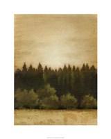 Treeline Sunset I Framed Print