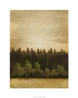 "Treeline Sunset II by Ethan Harper - 24"" x 30"", FulcrumGallery.com brand"