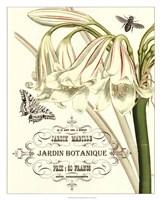 Jardin Botanique I Fine Art Print