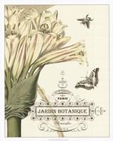 "Jardin Botanique II by Vision Studio - 24"" x 30"""