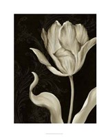 "Classical Tulip II by Ethan Harper - 24"" x 30"", FulcrumGallery.com brand"