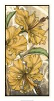 Hibiscus Song II Fine Art Print