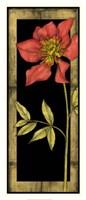 "Floral Inset II by Jennifer Goldberger - 14"" x 31"""