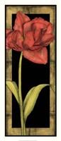 "Floral Inset III by Jennifer Goldberger - 14"" x 31"""
