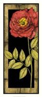 "Floral Inset IV by Jennifer Goldberger - 14"" x 31"""