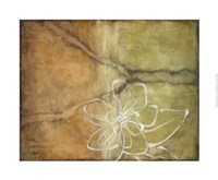 "Magnolia Silhouette I by Jennifer Goldberger - 32"" x 26"""