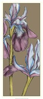 "Graphic Flower Panel III by Jennifer Goldberger - 15"" x 33"""