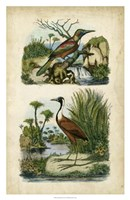 Avian Sanctuary II Fine Art Print