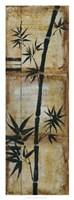 """Patinaed Bamboo II by Jennifer Goldberger - 14"""" x 38"""""""