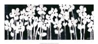 """White Flowers on Black II by Norman Wyatt Jr. - 20"""" x 8"""""""