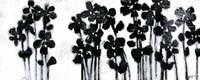 "Black Flowers on White I by Norman Wyatt Jr. - 20"" x 8"""
