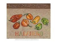 Habanero Fine Art Print