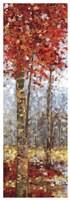 Crimson Woods I Fine Art Print