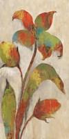 Tigerlilies I Elizabeth