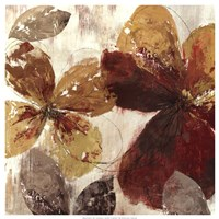 "Paloma II by Allison Pearce - 25"" x 25"" - $26.99"