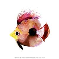 Pink Fish Fine Art Print