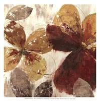 "Paloma II - MINI by Allison Pearce - 13"" x 13"" - $11.49"