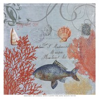 "Under the Sea I by Aimee Wilson - 13"" x 13"" - $11.49"