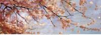 """Osaka Blossoms II - Mini by Asia Jensen - 18"""" x 6"""""""