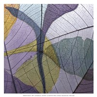 Purple and Grey Leaves I Fine Art Print