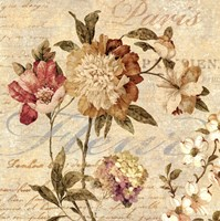 Fleur Paris II Fine Art Print