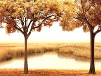 Golden Morning II Fine Art Print